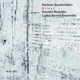 Scodanibbio: Due pezzi brillanti, I