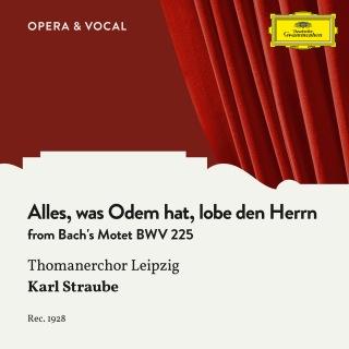 Bach: Alles, was Odem hat, lobe den Herrn - Finale Fugue, BWV 225