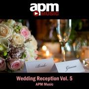 Wedding Reception Vol. 5