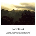 Layer Forest
