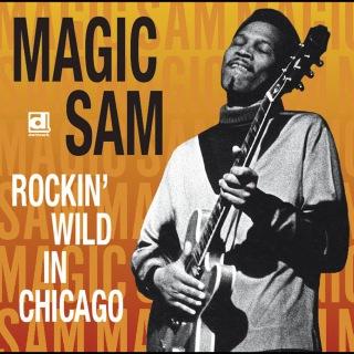 Rockin' Wild In Chicago
