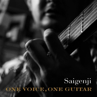 ONE VOICE,ONE GUITAR