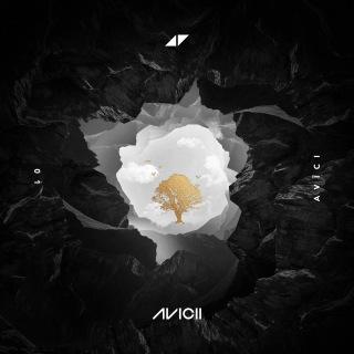 AVĪCI (01)