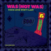 Your Luck Won't Last [The Remixes]