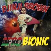 Afro-Bionic