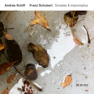Schubert: 4 Impromptus, Op. 90, D. 899: 3. Andante