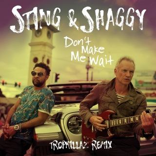 Don't Make Me Wait (Tropkillaz Remix)