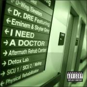 I Need A Doctor feat. Eminem, Skylar Grey