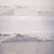 The Buried Sessions of Skylar Grey