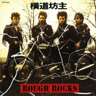 ROUGH ROCKS