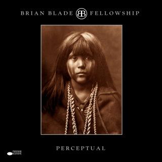 Perceptual (Remastered)