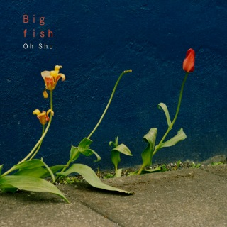 Big fish (PCM 48kHz/24bit)