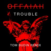 Trouble (Tom Budin Remix)