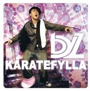 Karatefylla