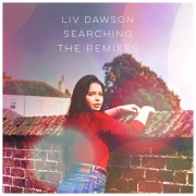 Searching (The Remixes)