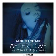 After Love (Paul Oakenfold Mix / Zaa Remix)