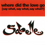 Where Did the Love Go (Say What, Say What, Say What)?