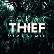 Thief (Zerb Remix)
