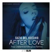 After Love (Paul Oakenfold Mix / Zaa Remix / Extended Version)