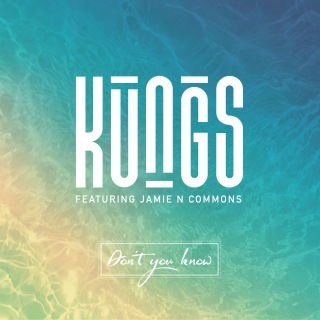 Don't You Know (DJ Licious Remix) feat. Jamie N Commons