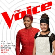 Hit Or Miss (The Voice Performance)
