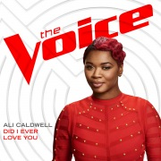 Did I Ever Love You (The Voice Performance)