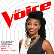 I Don't Want To Miss A Thing (The Voice Performance)