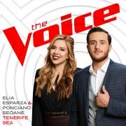 Tenerife Sea (The Voice Performance)