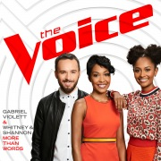 More Than Words (The Voice Performance)