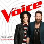 Sledgehammer (The Voice Performance)