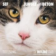 """Jungle Van Beton (Titelsong """"De Wilde Stad"""")"""