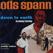 Down To Earth: The Bluesway Recordings feat. Muddy Waters