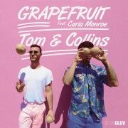 Grapefruit feat. Carla Monroe