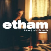 Future (MJ Cole Remix)