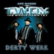 Ant Banks Presents TWDY Derty Werk