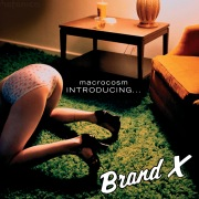 Macrocosm - Introducing... Brand X