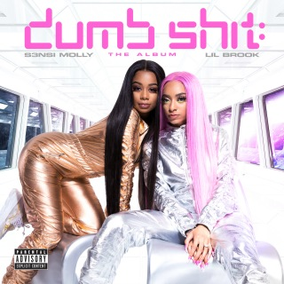 Dumb Shit: The Album