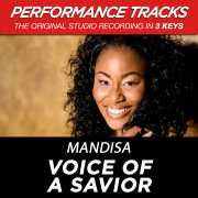 Voice Of A Savior (Performance Tracks) - EP