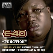Function (Remix) feat. Young Jeezy, Chris Brown, Problem, French Montana, Red Cafe