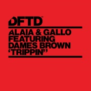 Trippin' (feat. Dames Brown) [Extended Mixes]