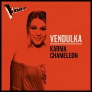 Karma Chameleon (The Voice Australia 2019 Performance / Live)