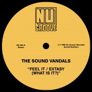 Feel It / Extasy (What Is It?)