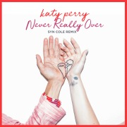 Never Really Over (Syn Cole Remix)