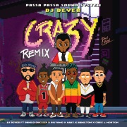 Crazy (Remix)