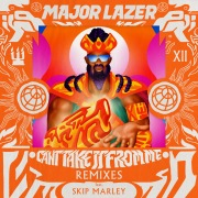 Can't Take It From Me (feat. Skip Marley) [Remixes]