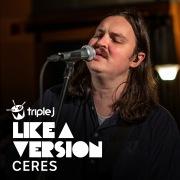 A Thousand Miles (triple j Like A Version)
