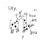 Shy, how are you?