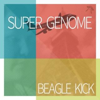 SUPER GENOME(32bit/384kHz)