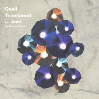 Transcend feat. Armi (Up Dharma Down)