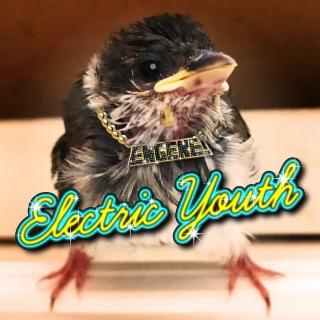 Electric Youth~電撃的青春~